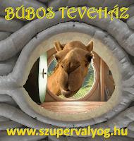 http://bubosokohaz.szupervalyog.com/bubos-tevehaz